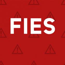 sitefies2
